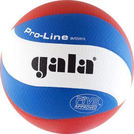 Мяч волейбольный Gala Pro-Line 10 FIVB