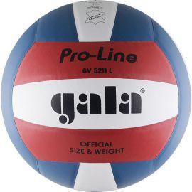 Мяч волейбольный Gala Pro-Line Colour