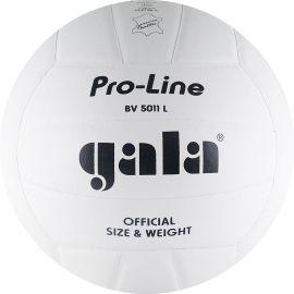 Мяч волейбольный Gala Pro-Line Competition